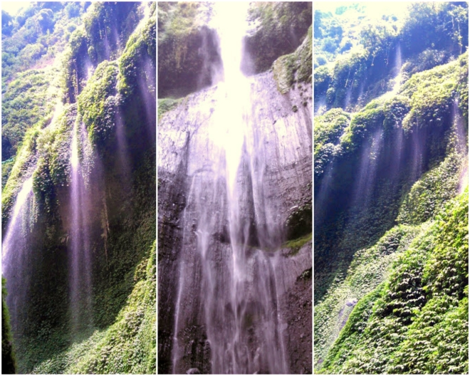 Madakaripura.jpg
