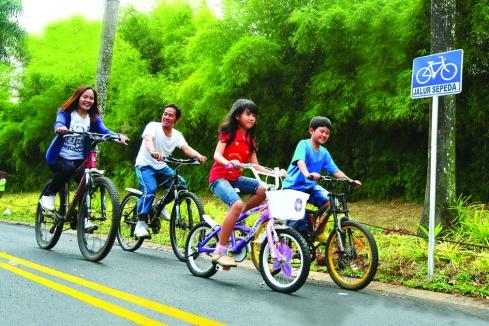 jalur-sepeda