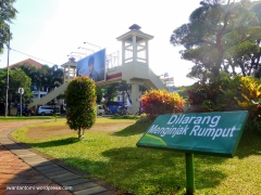 Edukasi Green Living